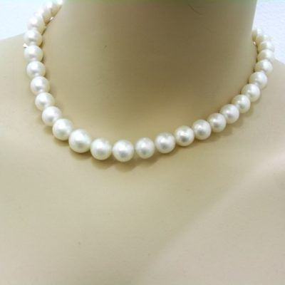 South Seas Pearls